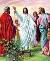 jesus-y-apstoles1