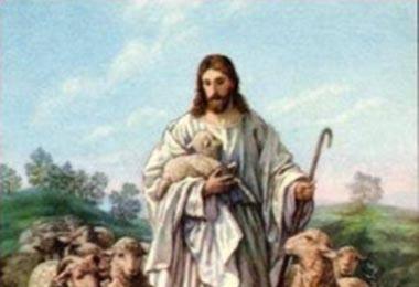 jesus-y-las-ovejas destaque