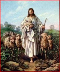 jesus-y-las-ovejas