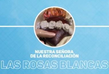 FS-Las Rosas blancas