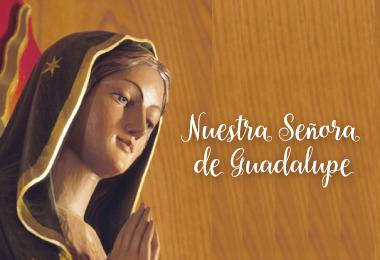 Fiesta-Nuestra-Señora-Guadalupe-12-diciembre-2015