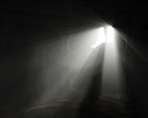 rothko-light4cut