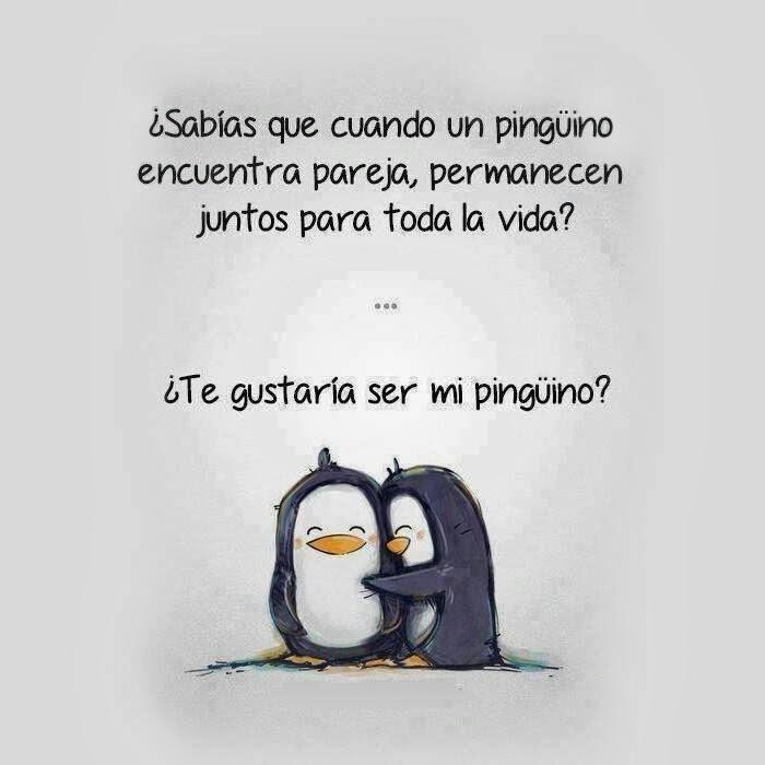 pinguino-fiel