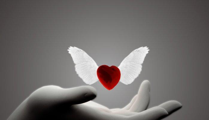 corazon-con-alas