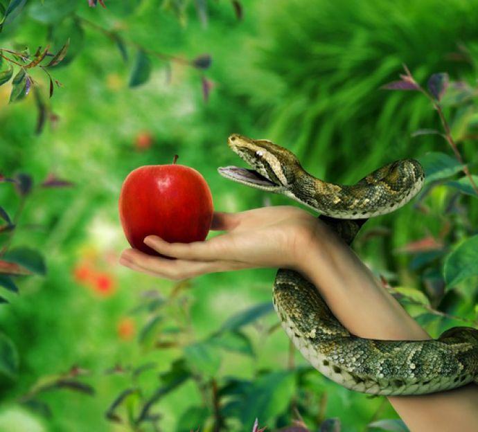 manzana-tentacion